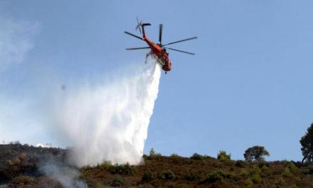 Η πυροσβεστική έθεσε υπό έλεγχο την πυρκαγιά στην Εύβοια