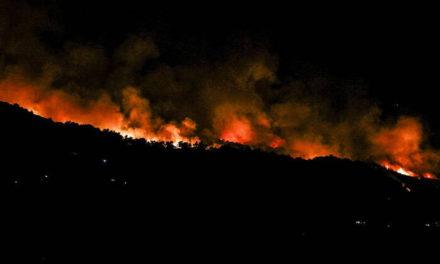 Φωτιά τώρα στην Εύβοια – Μεγάλη κινητοποίηση της Πυροσβεστικής