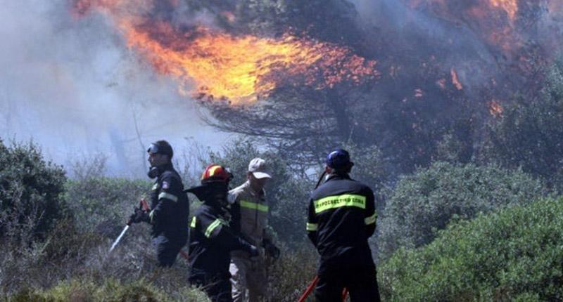 Συνελήφθη 64χρονος ως υπαίτιος της πυρκαγιάς στα Μανίκια Ευβοίας