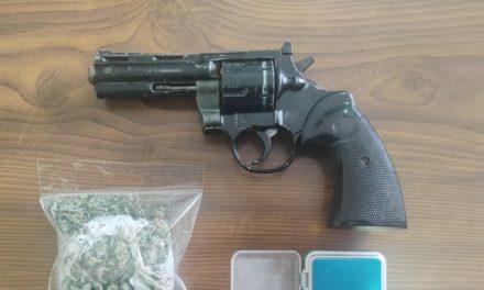 """""""Δανεικός"""" αστυνομικός σκύλος βρήκε ναρκωτικά και όπλο σε …ξυλόσομπα"""