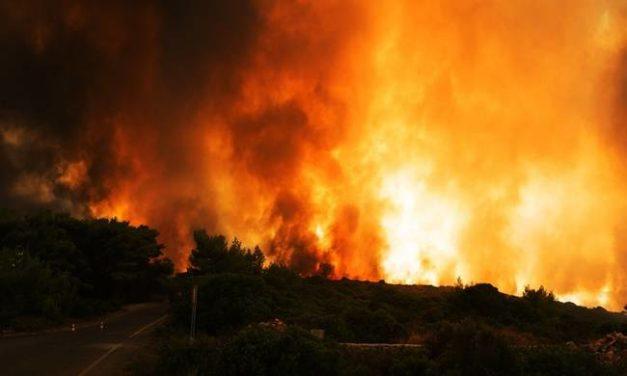 Πυροσβεστική: Περισσότερες φέτος οι πυρκαγιές, λιγότερες οι καμένες εκτάσεις