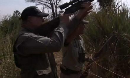 Οργή για βίντεο με τον επικεφαλής του λόμπι υπέρ της οπλοκατοχής να πυροβολεί ελέφαντα