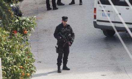 Ένας… στρατός από αστυνομικούς για πολιτικούς και επισήμους