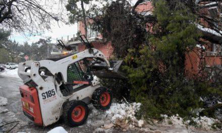 """Μπαλάκι οι ευθύνες για τη """"Μήδεια"""": Χωρίς ρεύμα για 5η ημέρα 3.500 νοικοκυριά – Δέντρο έπεσε σε σοφίτα σπιτιού στην Άνοιξη – ΒΙΝΤΕΟ"""
