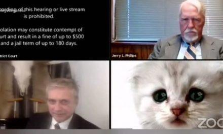 Δικηγόρος «εμφανίστηκε» σαν γάτα σε τηλεδιάσκεψη δικαστηρίου και έγινε viral σε όλο τον κόσμο – ΒΙΝΤΕΟ