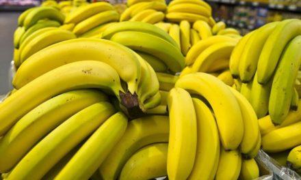 Βρήκαν κοκαΐνη σε φορτίο με μπανάνες σε σούπερ μάρκετ στη Βαρσοβία