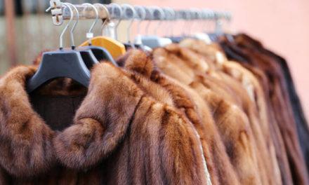 Η πρώτη χώρα που απαγορεύει το εμπόριο γούνας ζώων για τη μόδα