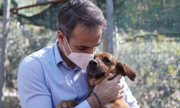 Μητσοτάκης: Κανένα ζώο αδέσποτο, κανένα ζώο κακοποιημένο